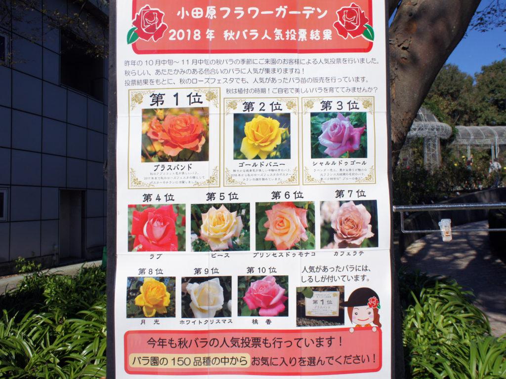 『小田原フラワーガーデン』画像09